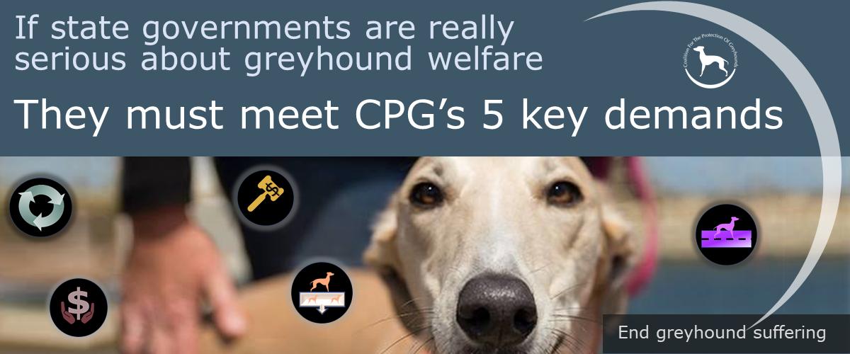 CPG 5 key demands