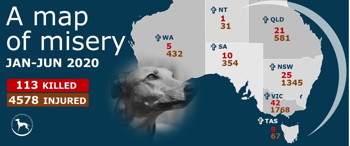 Australian greyhound track injuries and deaths Jan to Jun 2020