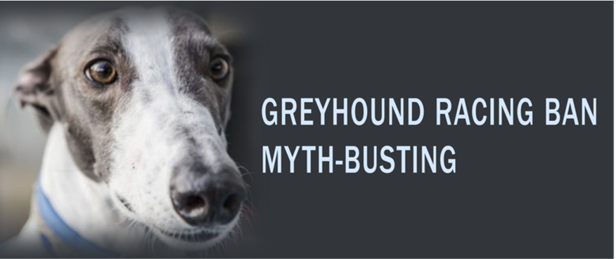 Myth-busting: the 2016 NSW Greyhound Racing Ban