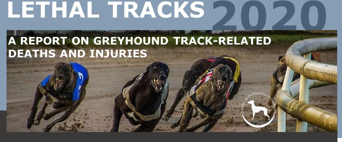 slider_lethal tracks 2020