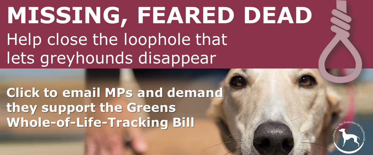 Whole-of-life-Tracking Bill designed to protect greyhounds from euthanasia